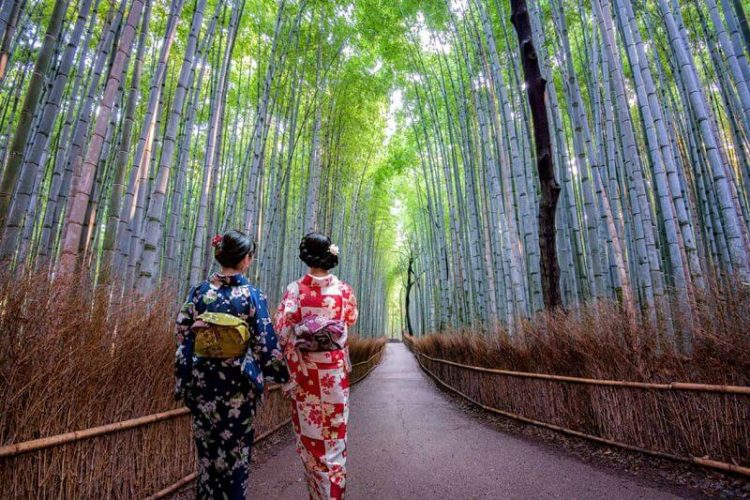 Arashiyama-from-Kyoto-shore-excursions