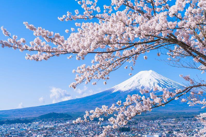 Best-place-view-Mount-Fuji