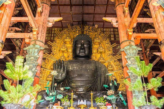 Daibutsuden-Osaka-Nara-shore-excursions