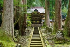 Eiheiji Temple Tsuruga shore excursions