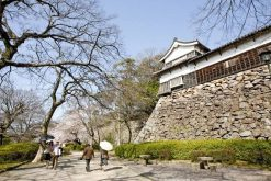 Fukuoka Castle shore excursions