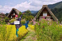 Gokayama village Kanazawa shore excursions