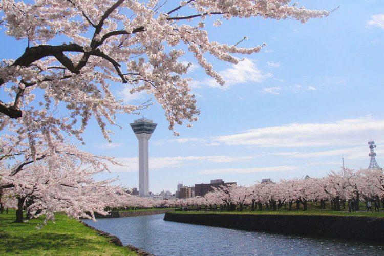 Goryokaku-Park-Hakodate-shore-excursions