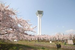 Goryokaku Park-Tower-Hakodate-shore-excursions