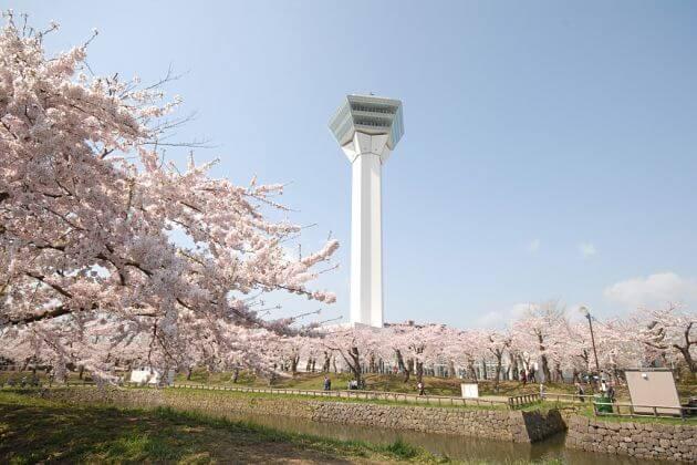 Goryokaku Park-Tower-Hakodate-shore-excursions