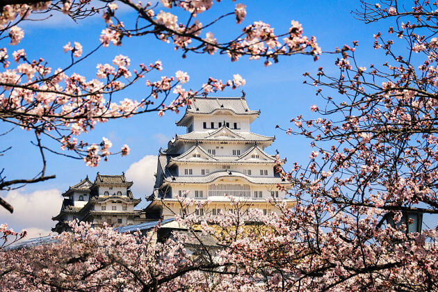 Himeji Castle--Osaka-Kobe-shore-excursions