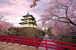 Hirosaki Castle in Aomori shore excursions