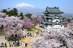 Hirosaki Park Castle Aomori shore excursions