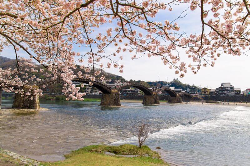 Hiroshima-Iwakuni-shore-excursions