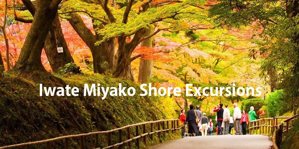 Iwate Miyako Shore excursions