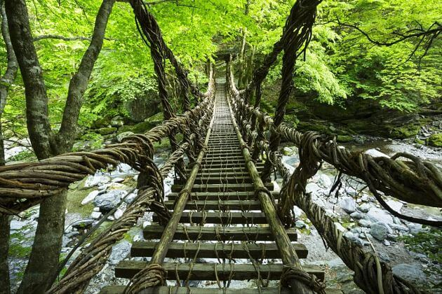 Iya Kazurabashi Bridge-Kochi-japan-shore-excursions