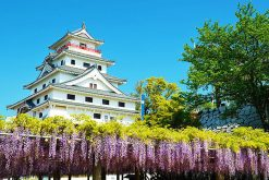 Karatsu Highlight shore excursion