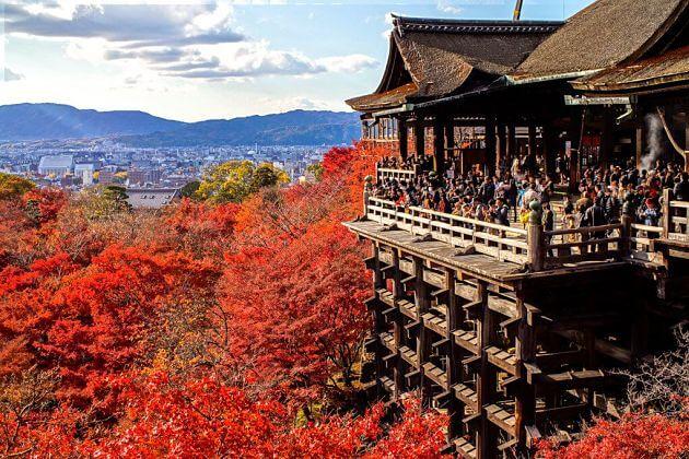 Kiyomizudera Temple Autumn leaves