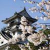 Kochi-castle-japan-shore-excursions