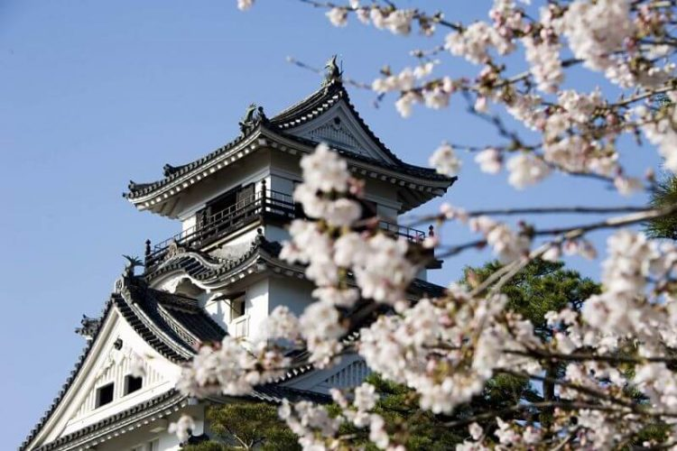 Kochi-castle-japan-shore-excursions