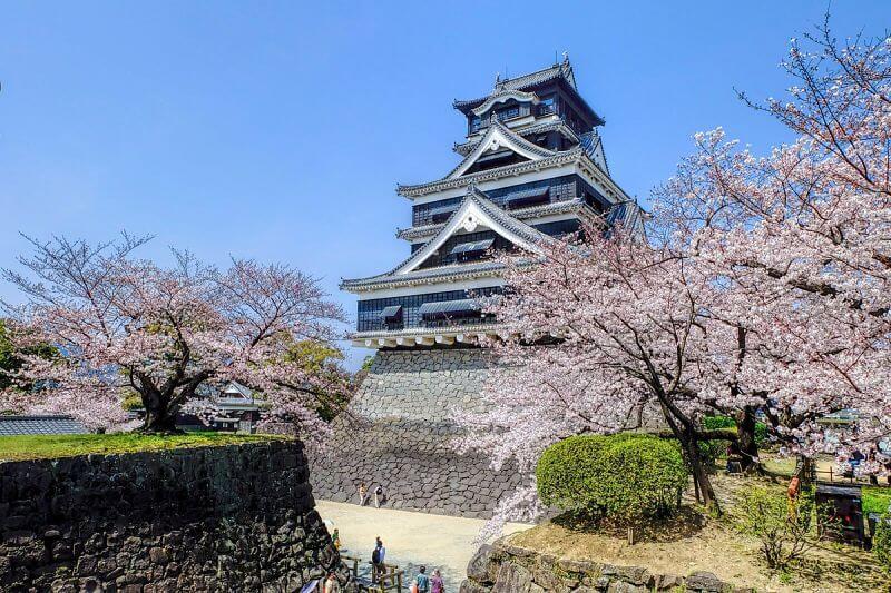 Kumamoto highlights shore excursion