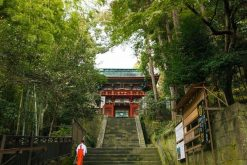 Kunozan Toshogu Shrine Shimizu shore excursions