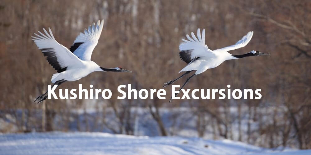 Kushiro shore excursions attraction