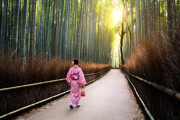 Kyoto Arashimaya Bamboo Forest