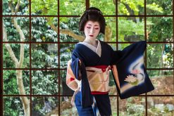 Kyoto-highlights-lunch-Maiko