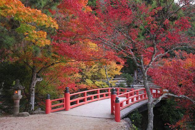 Momijidani Park Hiroshima shore excursions