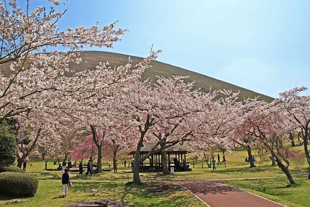 Nagasaki shore excursions Sakura no Sato attractions