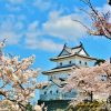 Niigata history shore excursions