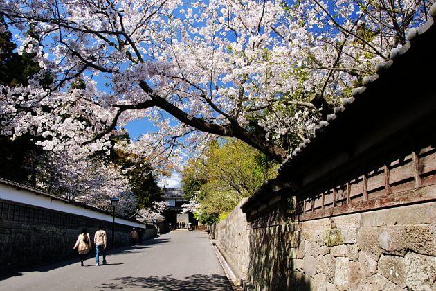 Obi Castle Ruins Miyazaki shore excursions