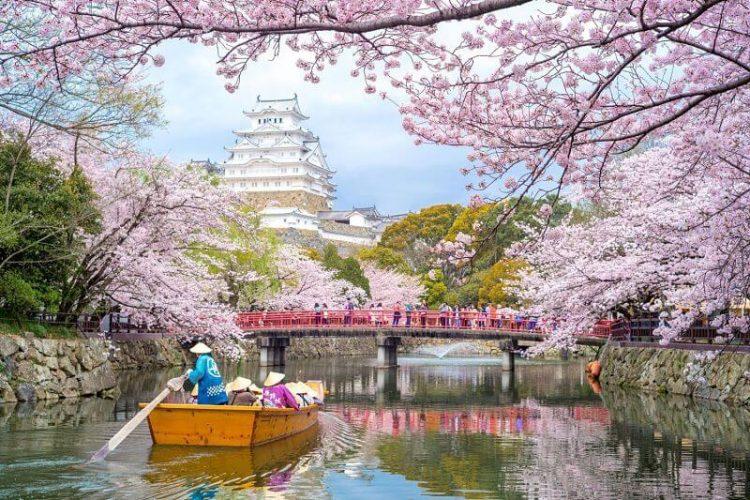 Osaka Himeji Kobe Ultimate shore excursions