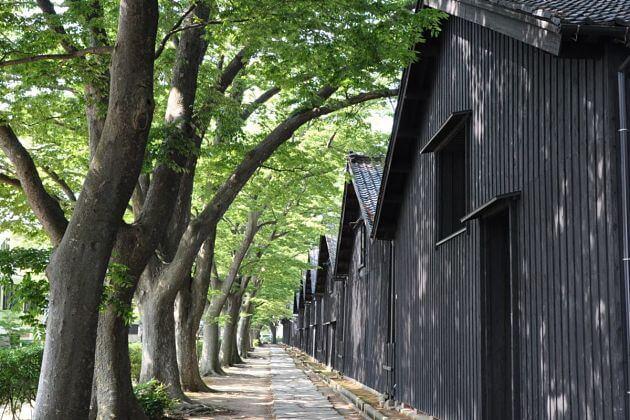 Sankyo Warehouse Sakata shore excursions