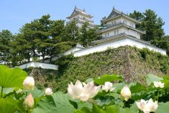 Shimabara-Castle-Nagasaki-shore-excursions