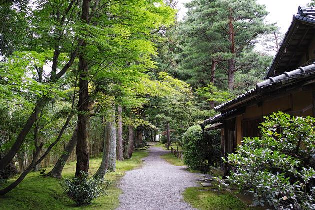 Shimizu-en Garden Niigata shore excursions