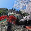 Shore Excursions Shingu Shrines & Dorokyo Gorge