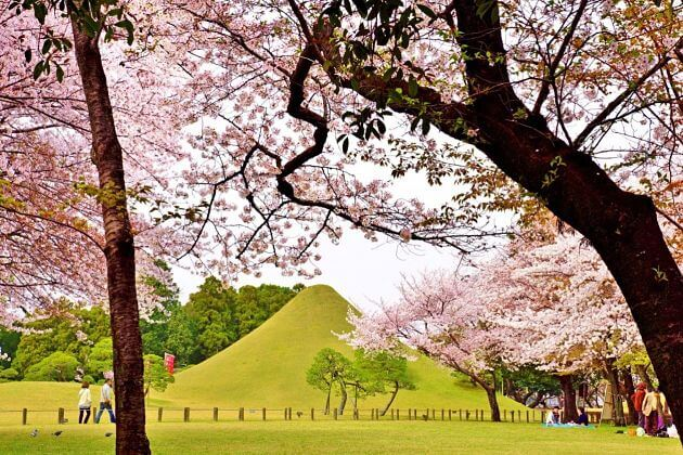 Suizenhi Garden Kumamoto shore excursions