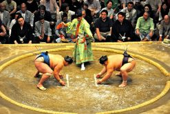 Sumo Experience in Nara