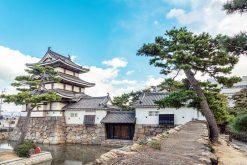 Takamatsu Highlights shore excursion