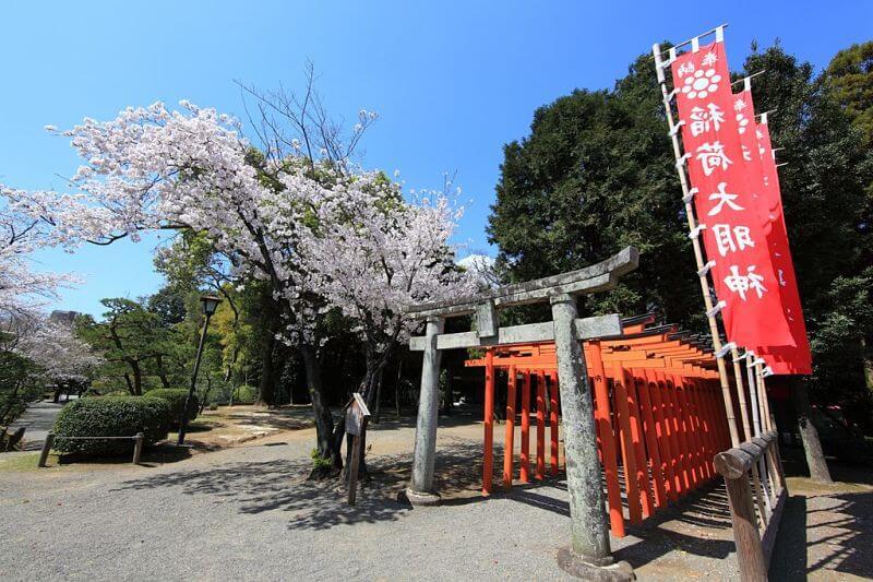 Taste of Kumamoto shore excursions