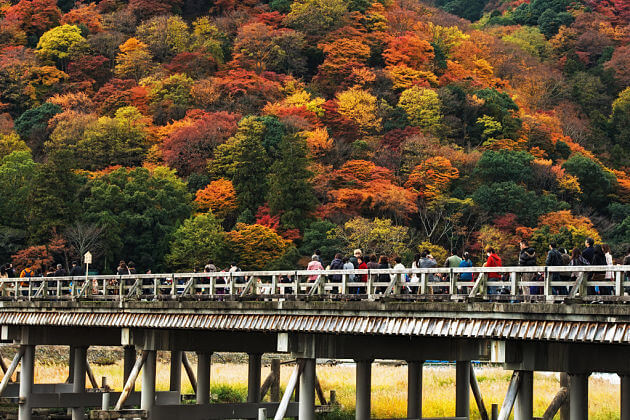 Togetsukyo Bridge Maizuru shore excursions