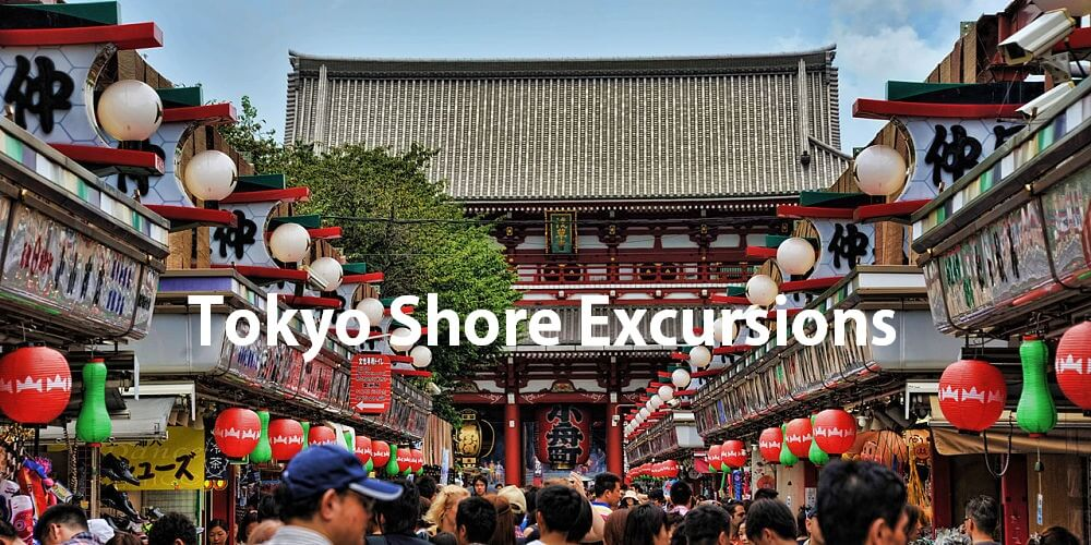 Tokyo shore excursions