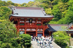 Tsurugaoka-Hachimangu-Shrine-Kamakura-Tokyo-shore-excursions