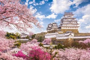 Ultimate Guide Cruising Japan shore excursions
