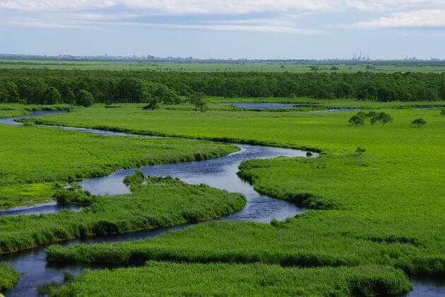 shore excursions Kushiro Marshland